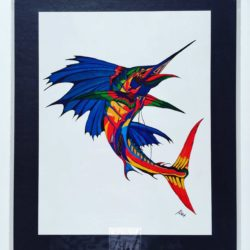 Colourful Sailfish